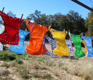 Cloth Diapering Anniversary