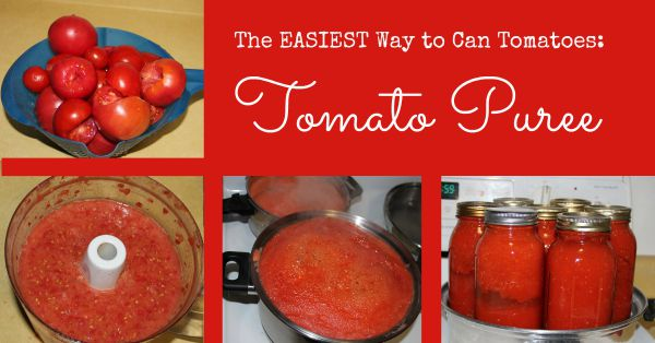 The Easiest Way to Can Tomatoes is Tomato Puree