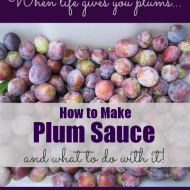 How to Make Plum Sauce and What to Do with it