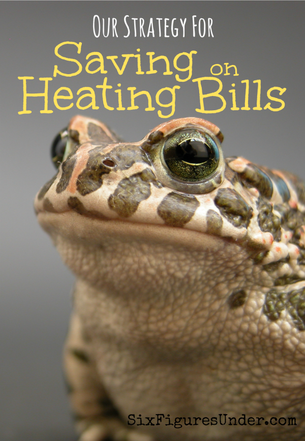 When do you turn on the heat when the weather cools off? Could you wait a little longer? Using the principle of the frog analogy in the reverse, let me explain how we save big on heating costs.