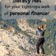 Financial Safety Nets