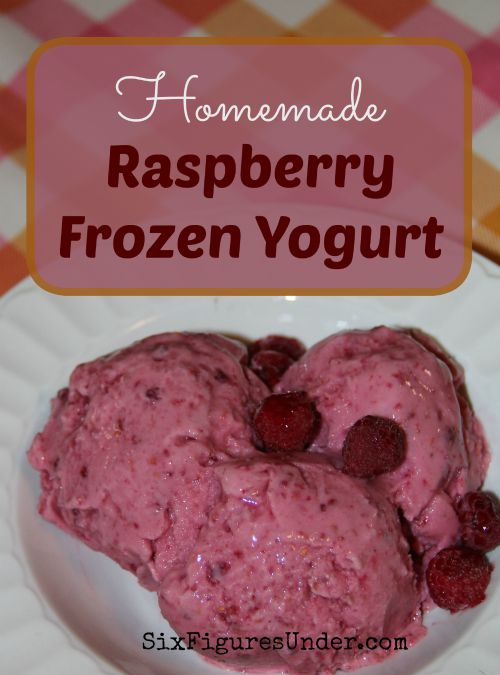 Raspberry Frozen Yogurt- An Easy and Delicious Summer ...