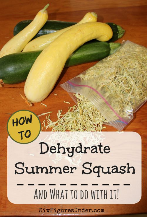 If you've got zucchini or yellow squash growing in your garden, you probably have an abundance. If you've run out of ways to use your summer squash fresh and your freezer is full, there is yet another way to store your harvest-- dehydrating! Here's how to dehydrate summer squash and to do with it!