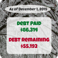 November 2015 Debt Repayment Progress Report
