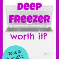 💸 Is a deep freezer worth it? 💸