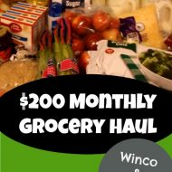 Our Monthly Grocery Shopping Trip Notes (+ Video)