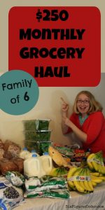 $250 Monthly Grocery Shopping for April (with video)