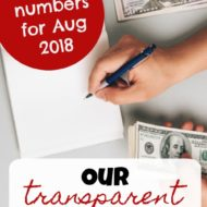 Transparent Family Budget Update — August 2018