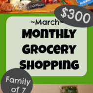 $300 Monthly Grocery Shopping After a No-Spend Month– March 2019