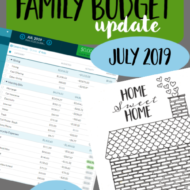 Real Family Budget Update– July 2019