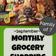 Monthly Grocery Shopping– September 2019