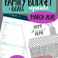 Real Family Budget Update– March 2020